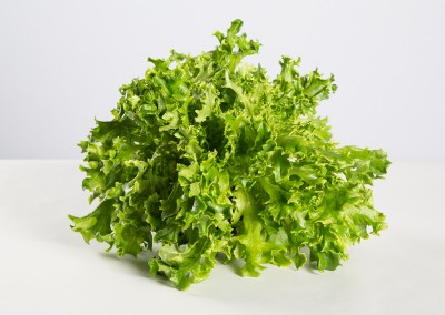Robbes frisée