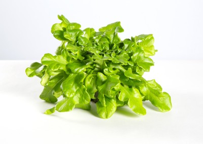 Robben Gourmée Salaatti